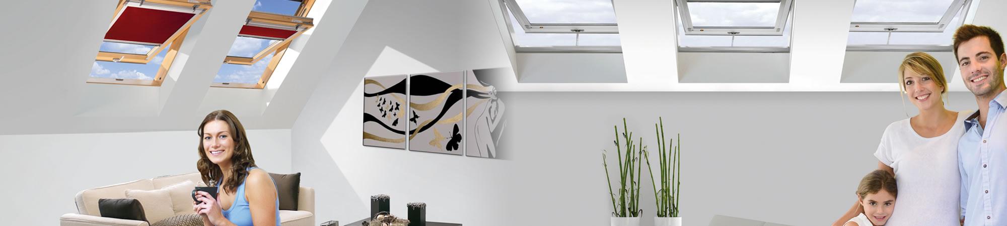 img-finestre-per-tetto